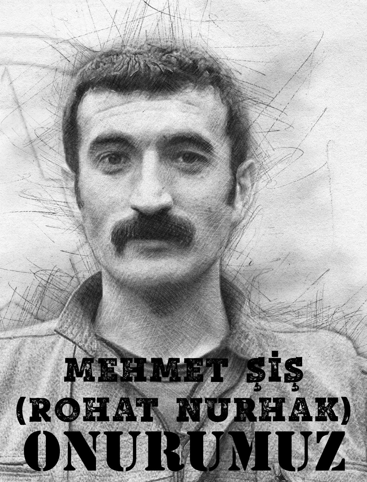 Mehmet Şiş